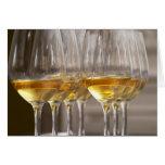 dos filas de los vidrios de la degustación de vino tarjetón