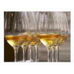 dos filas de los vidrios de la degustación de vino postal