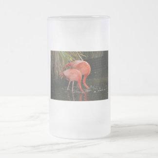 Dos flamencos con las cabezas en el agua taza cristal mate