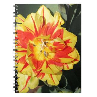 dos flores del tono notebook