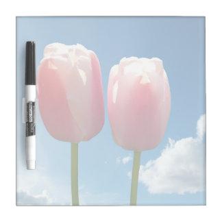 dos flores preciosas del tulipán en cielo azul. pizarra