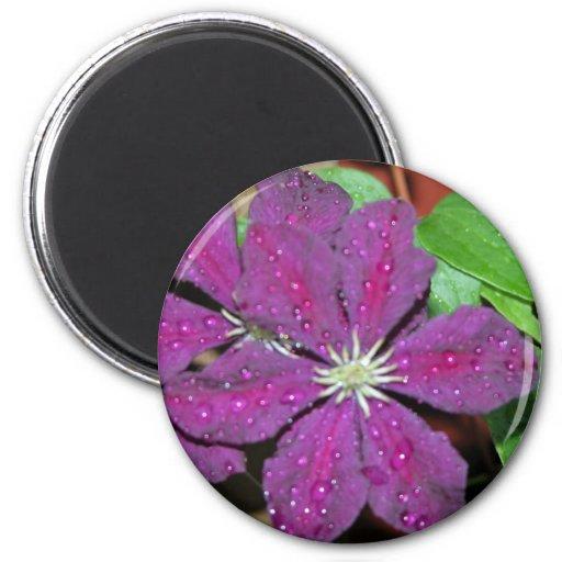 Dos flores púrpuras imán redondo 5 cm
