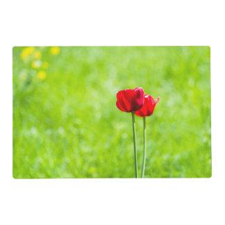 Dos flores rojas del tulipán salvamanteles