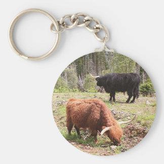 Dos ganado de la montaña, Escocia Llavero Redondo Tipo Pin