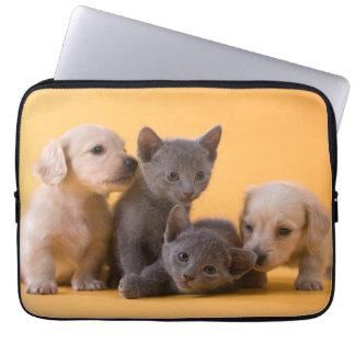 Dos gatitos azules rusos y dos perritos del funda ordendadores
