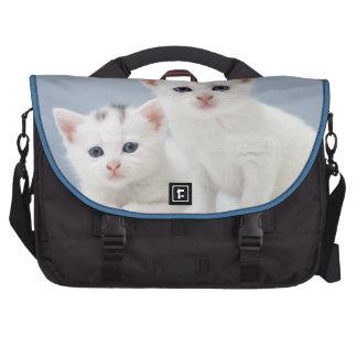 Dos gatitos blancos muy jovenes miran fijamente in bolsa de ordenador