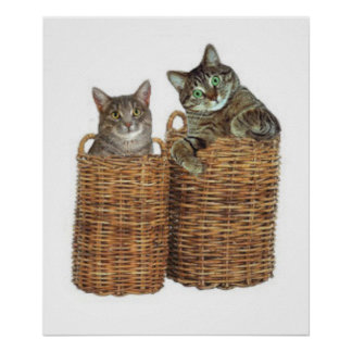 Dos gatitos cada uno en una cesta póster