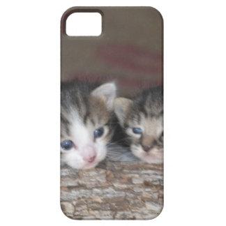 Dos gatitos en registro funda para iPhone 5 barely there