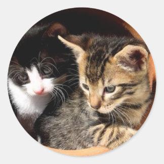 dos gatitos lindos pegatina redonda