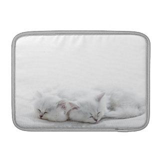 Dos gatitos persas fundas macbook air