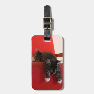 Dos gatitos que cuelgan de un amortiguador rojo de etiquetas para maletas
