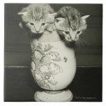 Dos gatitos que ocultan en florero, (B&W) Teja Cerámica