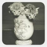 Dos gatitos que ocultan en florero, (B&W) Calcomanías Cuadradases