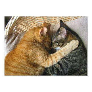 Dos gatos de Tabby el dormir que abrazan Invitación 12,7 X 17,8 Cm