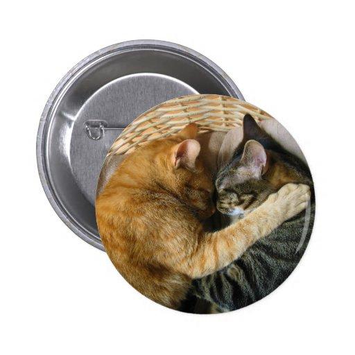 Dos gatos de Tabby el dormir que abrazan Pin Redondo 5 Cm
