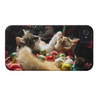 Dos gatos del gatito del navidad, gatitos junto, c Case-Mate iPhone 4 funda