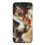 Dos gatos del gatito del navidad, gatitos junto, c iPhone 5 cárcasas