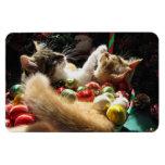 Dos gatos del gatito del navidad, gatitos junto, c iman rectangular