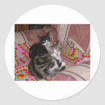 Dos gatos en el amortiguador pegatina redonda