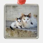 Dos gatos en los pasos de piedra adorno de navidad
