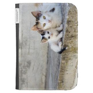 Dos gatos en los pasos de piedra