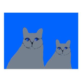 Dos gatos grises con los ojos azules tarjetas postales