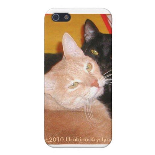 ¡DOS GATOS LE ESTÁN MIRANDO! iPhone 5 CARCASAS