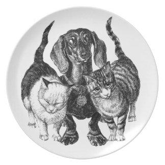 Dos gatos y una placa del arte del perro de patas  plato de comida