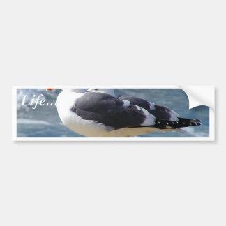 Dos gaviotas etiqueta de parachoque