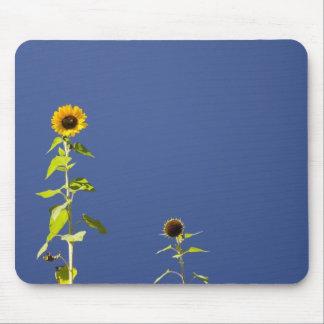 Dos girasoles contra el cielo azul mouse pad