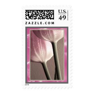 Dos gotas de agua de PinkTulips, sellos de los E.E