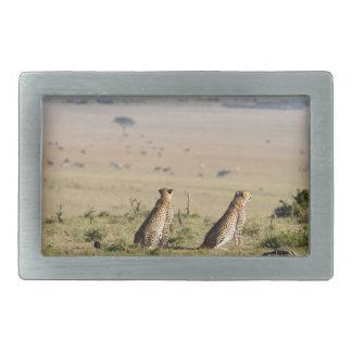 Dos guepardos en la mirada hacia fuera hebillas cinturon rectangulares