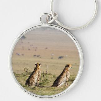 Dos guepardos en la mirada hacia fuera llavero redondo plateado