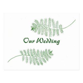 Dos helechos verdes nuestras postales de las invit