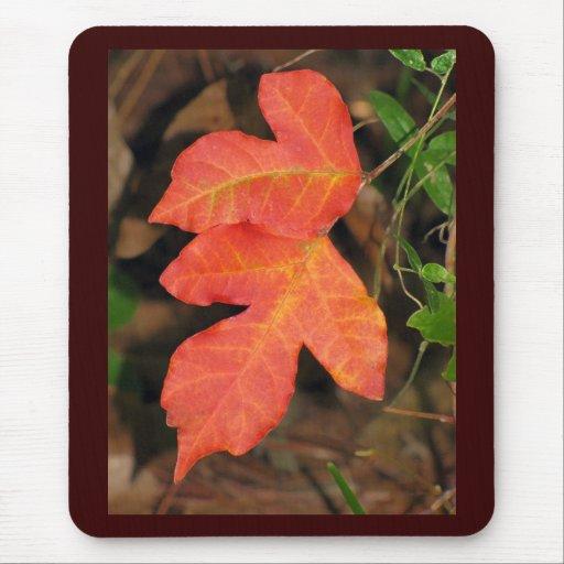 Dos hojas de otoño rojas alfombrilla de ratón