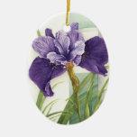 Dos iris - ornamento ornamento para reyes magos