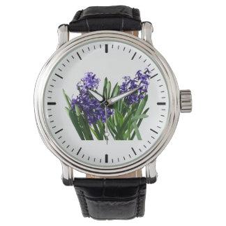 Dos jacintos púrpuras relojes de mano