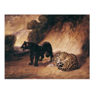 Dos jaguares de Perú Postales