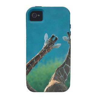 Dos jirafas (camelopardalis del Giraffa) iPhone 4 Carcasa