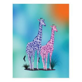 Dos jirafas en azul postales