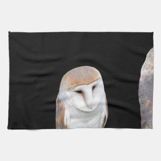 Dos lechuzas comunes aisladas en fondo oscuro toalla