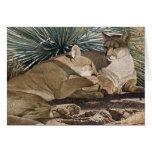 """Dos leones del Mt. en el desierto """"SOMBRAS """" Tarjetas"""