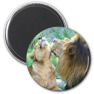 Dos leones imán redondo 5 cm