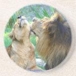Dos leones posavasos manualidades
