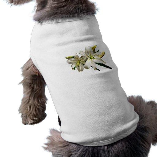 Dos lirios blancos y brotes ropa perro