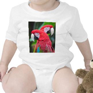 Dos loros coloridos del macaw traje de bebé
