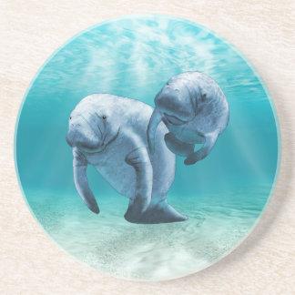 Dos Manatees que nadan