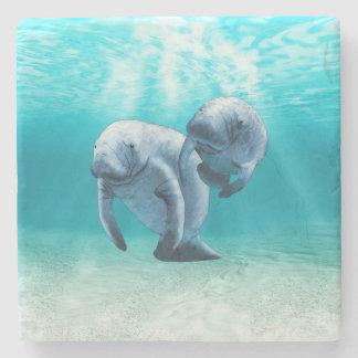 Dos Manatees que nadan Posavasos De Piedra