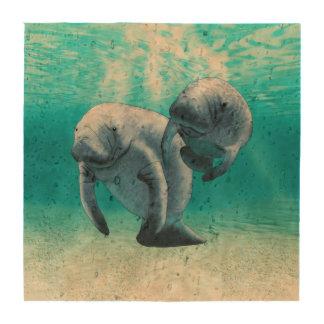 Dos Manatees que nadan Posavasos