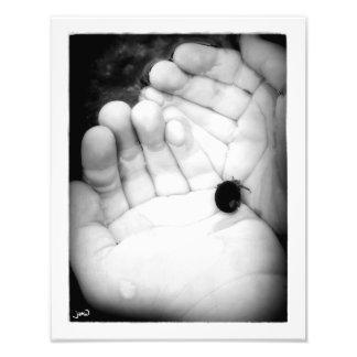 Dos manos para el cangrejo de ermitaño fotografías